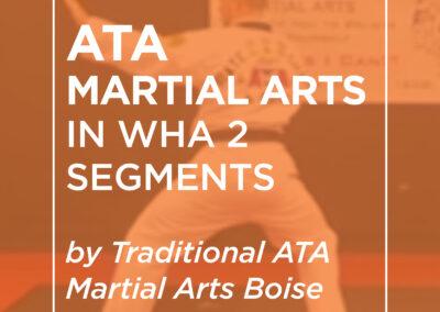 ATA Martial Arts: In Wha 2 Segments