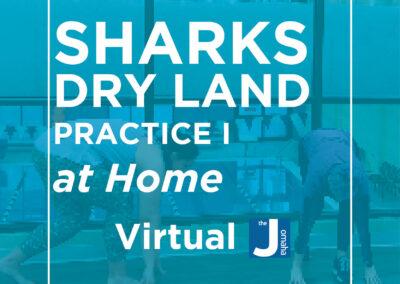 Dry Land Swim Team Practice I
